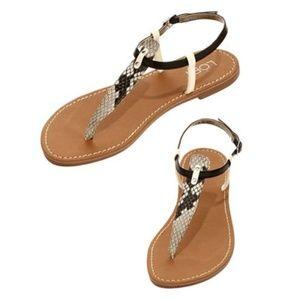 Ann Taylor LOFT Snake Print T Strap Flat Sandals